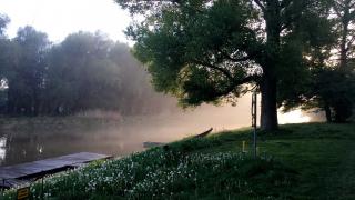 Magische Donauauen